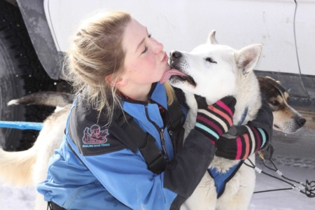dog sled employment opportunities canmore and banff