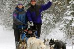 Howling Dog Tours Sleddog Tours In The Canadian Rockies 10